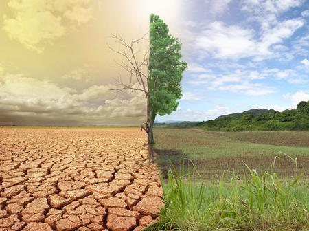 alrededor del mundo: imagen del concepto creativo comparar del calentamiento global. Foto de archivo