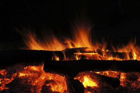 fire wood on dark background