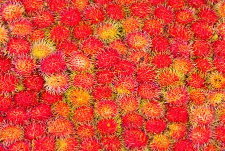 Rambutan, tropical fruit  photo