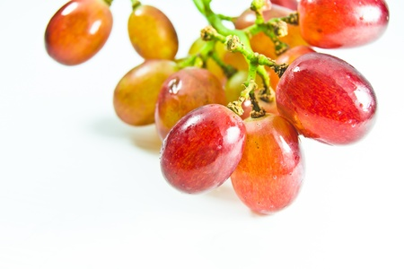 red grape on white background Stock Photo - 11269771