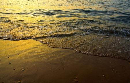 Tranquil beach sunrise. Sea waves foam and golden sand.