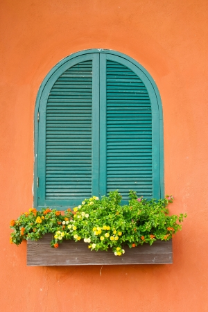Window and flower box photo