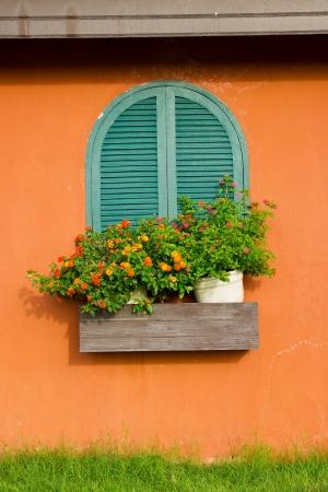 Window and flower box photo