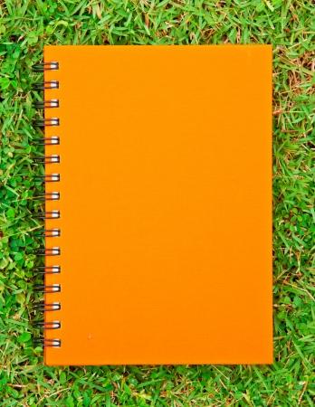 orange notebook on green grass field