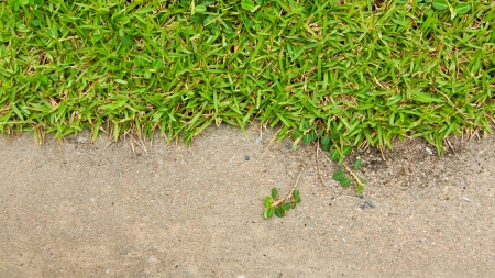Green grass and concrete photo