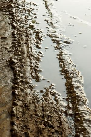 car tracks in wet mud  photo