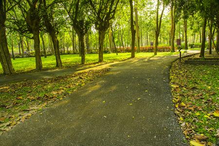 park garden Stock Photo