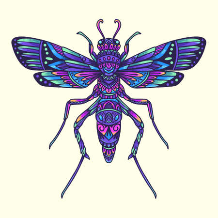 colorful dragonfly beetle mandala vector illustration