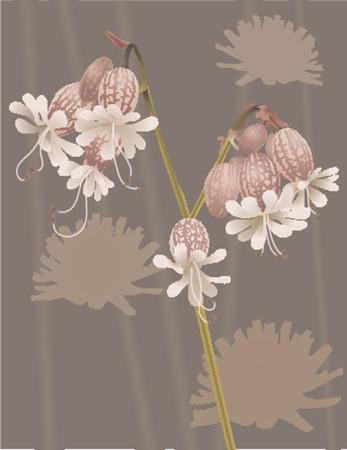 아름 다운 야생의 꽃입니다. 아름 다운 야생 꽃, 사용하는 망의 그림 일러스트