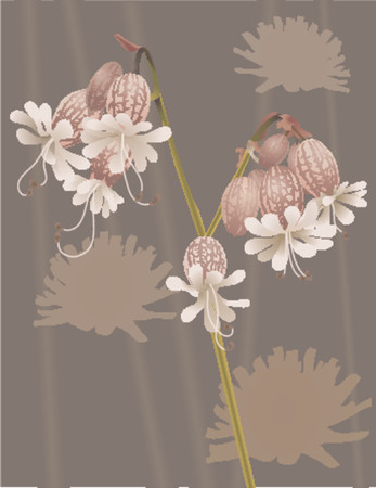 Beautiful Wild Flower. An illustration of a beautiful wild flower, no meshes used Ilustrace
