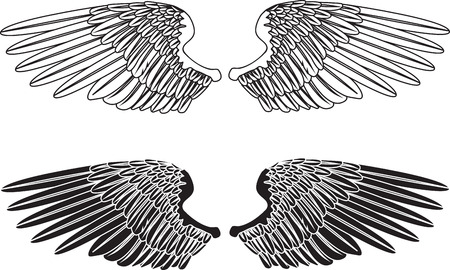 Een illustratie van twee paar uitgestrekte vleugels