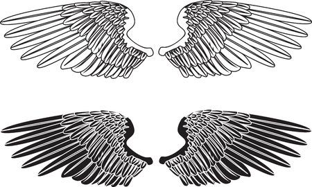 Jako przykład dwie pary skrzydeł rozpostarty