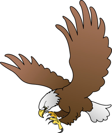 Illustration of bald eagle with spread wings Stock Vector - 3493490