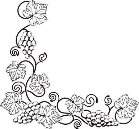 Una esquina de vid de uva de diseño de fondo ideal para cualquier elemento de diseño relacionados con el vino o con cualquier tema del Mediterráneo.