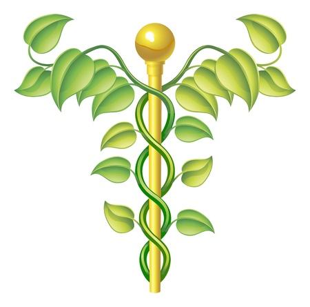 Natuurlijke caduceus concept, kan worden gebruikt voor natuurlijke of alternatieve geneeswijzen, etc.
