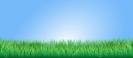 Green grass field or lawn under a clear blue sky