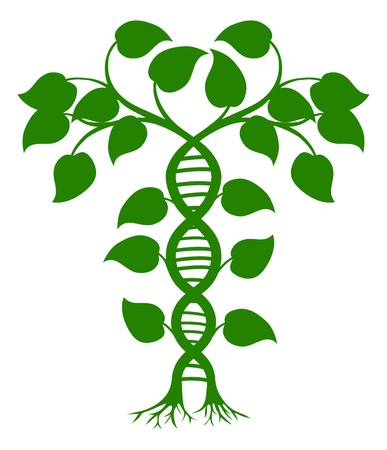 Green tree illustration with the trees or vines forming a DNA double helix Ilustração