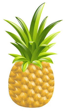 Illustration of a pineapple icon illustration