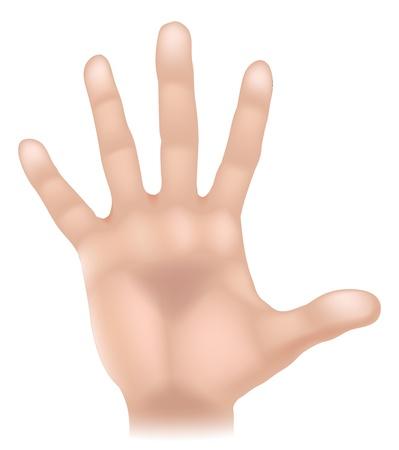 L'illustrazione di una mano parte del corpo umano, potrebbe rappresentare tocco nei cinque sensi