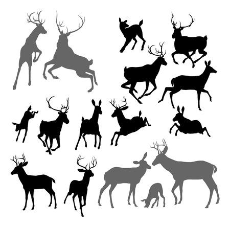 Silhouet van herten waaronder fawn, hinde bokken en hert. Vector Illustratie