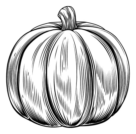 A vintage retro woodcut print or etching style pumpkin illustration Stock Vector - 23109829