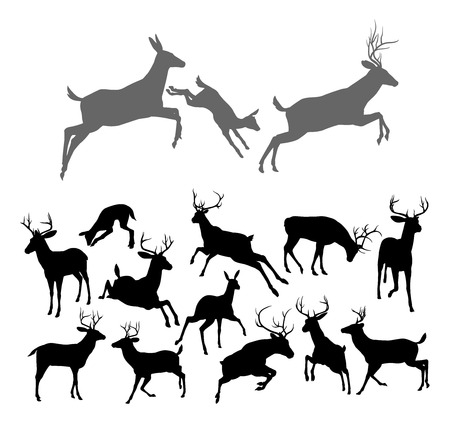 Deer silhouettes including fawn, doe bucks and stags in various poses Includes family group of stag doe and fawn running and jumping together