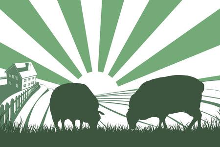 Een idyllische boerderij landschap met boerderij en schapen voeden met gras en opkomende zon boven glooiende heuvels