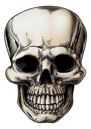 A Human Skull Or Grim Reaper Skeleton Head Illustration In A ...