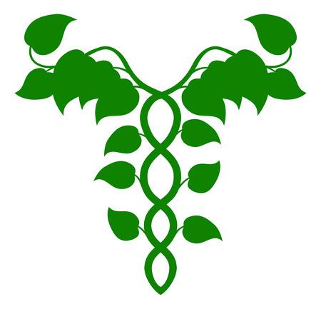 ブドウの木、DNA やホリスティック医学の概念から成ってカドゥケウスのイラスト