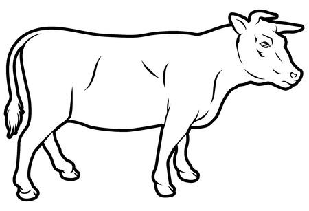 Een illustratie van een koe, kan een label voor rundvlees zijn