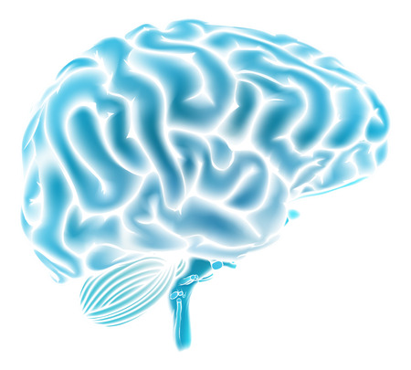A conceptual illustration of a glowing blue human brain. Could be a concept for a brainstorm or intelligence