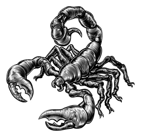 An original illustration of a scorpion in a vintage woodblock style Çizim
