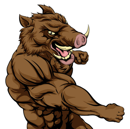 A mean looking boar sports mascot fighting and punching with fist Vettoriali