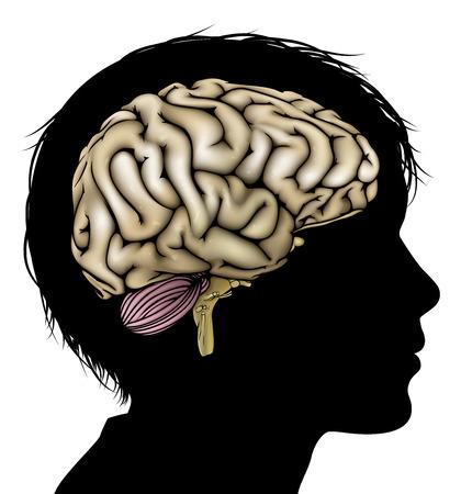 A la cabeza del niño en silueta con el cerebro. Concepto para el niño mental, desarrollo psicológico, el desarrollo del cerebro, el aprendizaje y la educación u otro tema médico