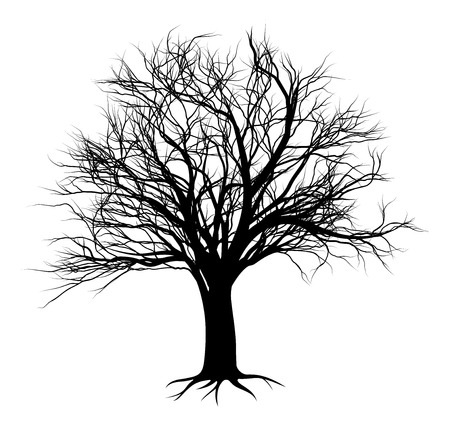 An illustration of a bare tree in silhouette