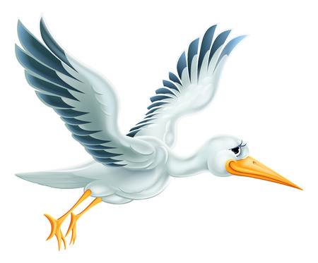 An illustration of a cute cartoon Stork bird character flying through the air Illustration