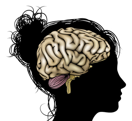 Een dames hoofd in silhouet met de hersenen. Concept voor mentale, psychische, ontwikkeling van de hersenen, leren en onderwijs of andere medische thema