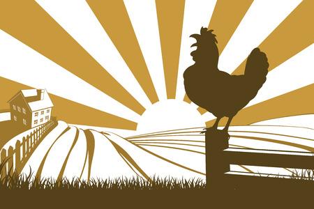 夜明けに日の出を背景にシルエット オンドリおんどり鳴くと転がり丘農場と農家