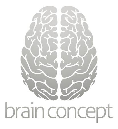 上から人間の脳の概念図