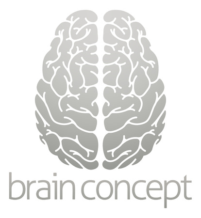 A conceptual illustration of the human brain from the top