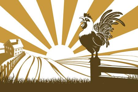 Una ilustración de un cacareo de pollo gallo en una granja con la salida del sol en el fondo