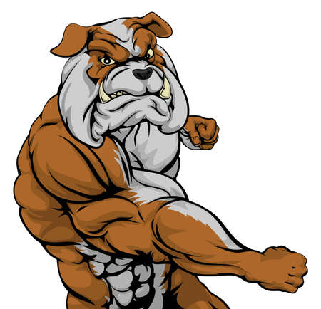 A mean looking bulldog sports mascot fighting and punching with fist