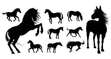 Een set van hoge kwaliteit zeer gedetailleerde paarden in verschillende poses in silhouet Stock Illustratie