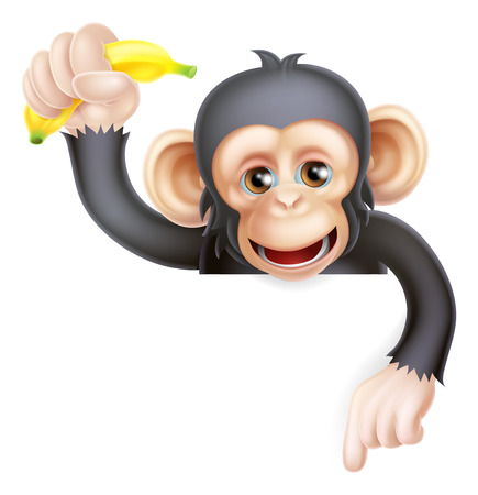 Cartoon chimp monkey like character mascot peeking above a sign holding a banana and pointing down  Ilustrace