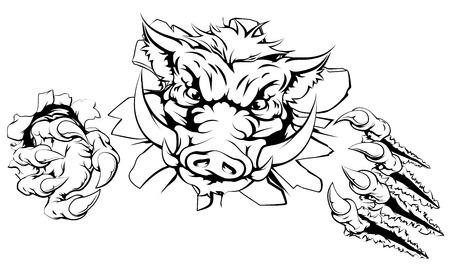 Boar claw breakthrough concept illustration of a boar mascot smashing out of the background Иллюстрация
