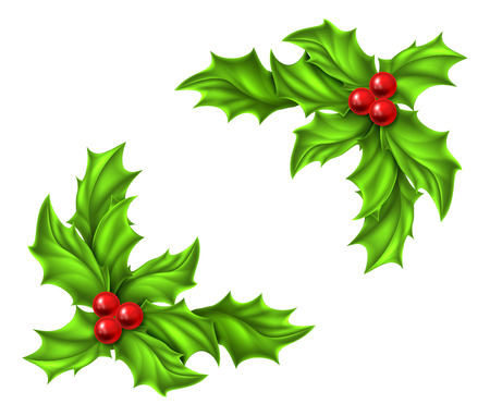Christmas Holly and red berries design elements