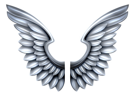 A pair of steel or silver shiny metal wings