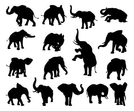Een set van olifant dierlijke silhouetten in verschillende poses