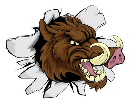 A wild boar or razorback cartoon sports mascot breaking through a wall