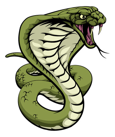 An illustration of a king cobra snake with hood out about to strike
